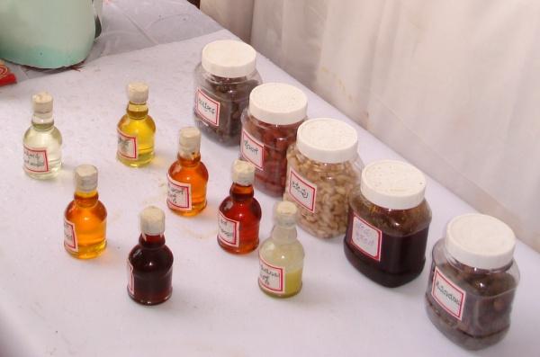 Biodiesel-variety-f-vegetable-oils