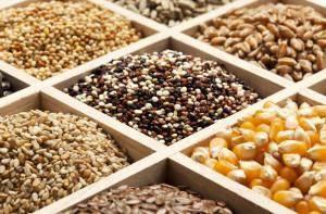 Seed banks - Diversity