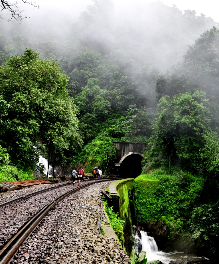 Ecotourism in India  Dudhsagar Falls
