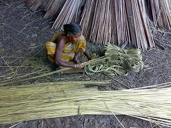 Natural fibers India - Jute