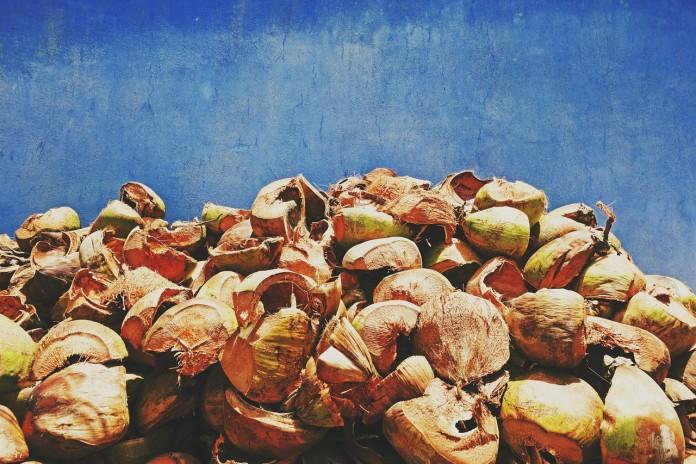 Eco-Flooring Coconut Shells