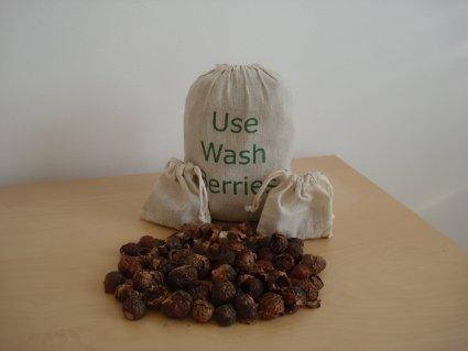 Soapnuts in India