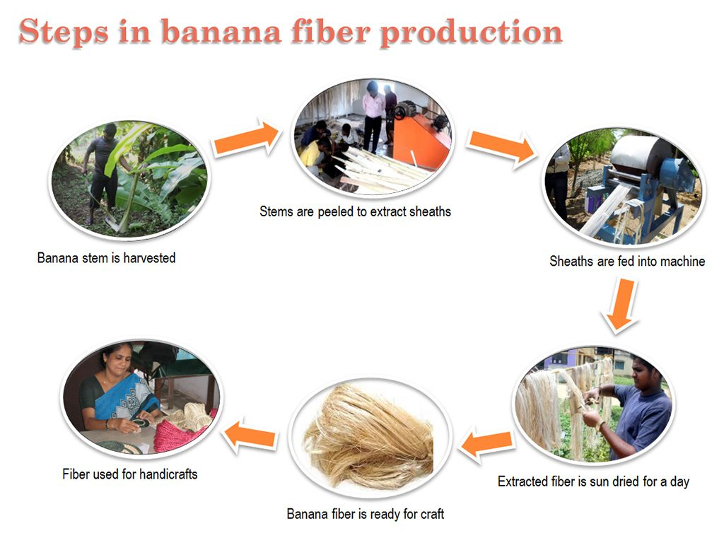 Producing-Banana-Fiber