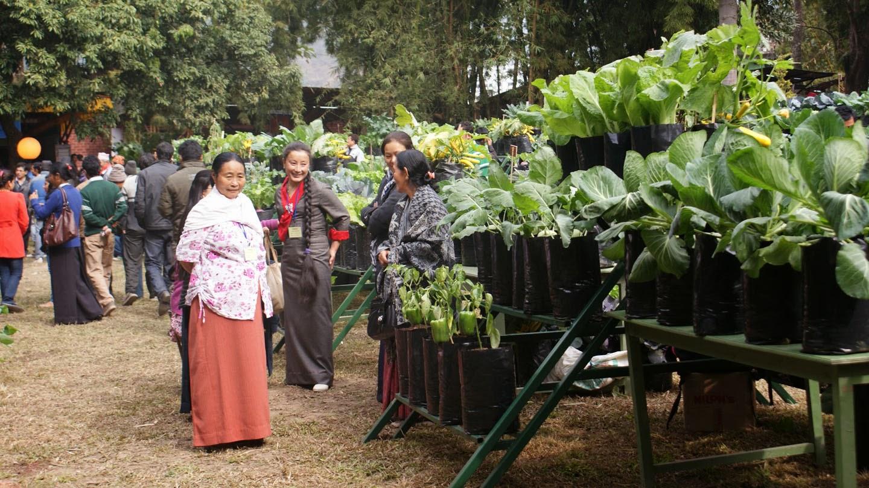 Sikkim Organic State