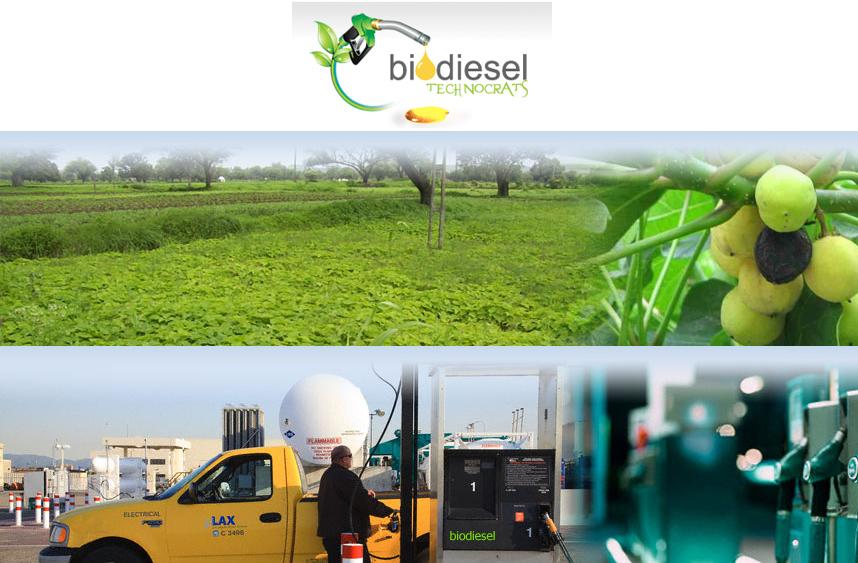 Biodiesel Technocrats
