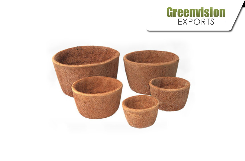 Greenvision Exports
