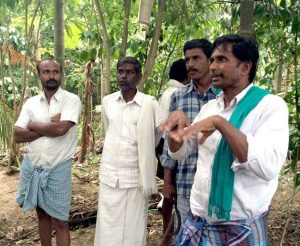 Natural-Farming-in-India-Krishnappa-Dasappa-Gowda