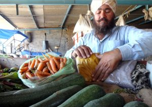 Natural-Farming-in-India-Sher-Singh