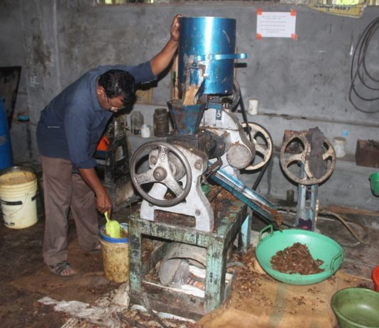 Biodiesel Extraction in India
