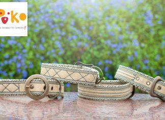 poko-pets-eco-friendly-dog-collar