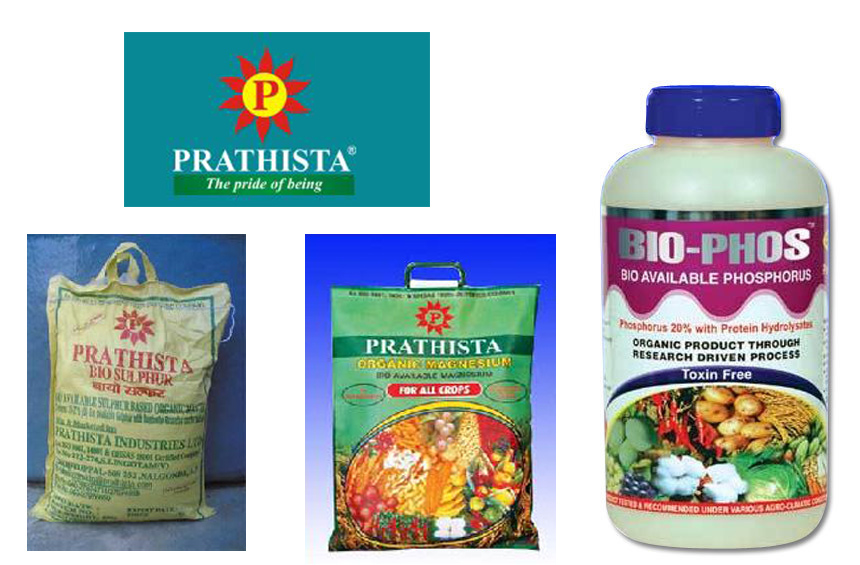 Prathista Industries Ltd