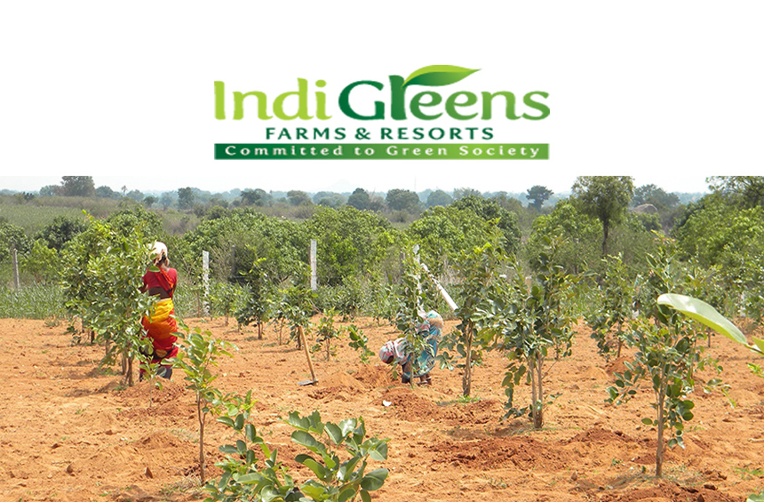 Indigreens Farms And Resorts