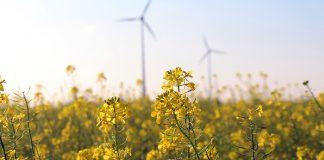 Green-Energy-India